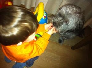 niño perro2