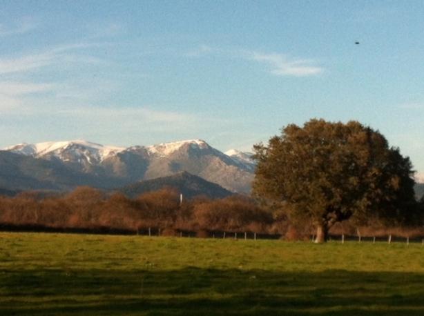 Montañas nevada